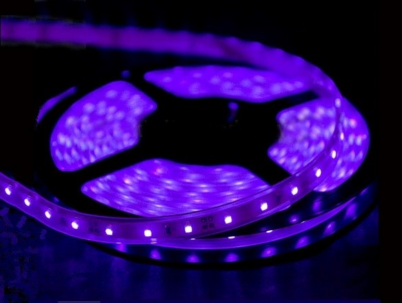 SMD LEDstrip | 12V | 24W | 300 LEDs | 5M | Black Light